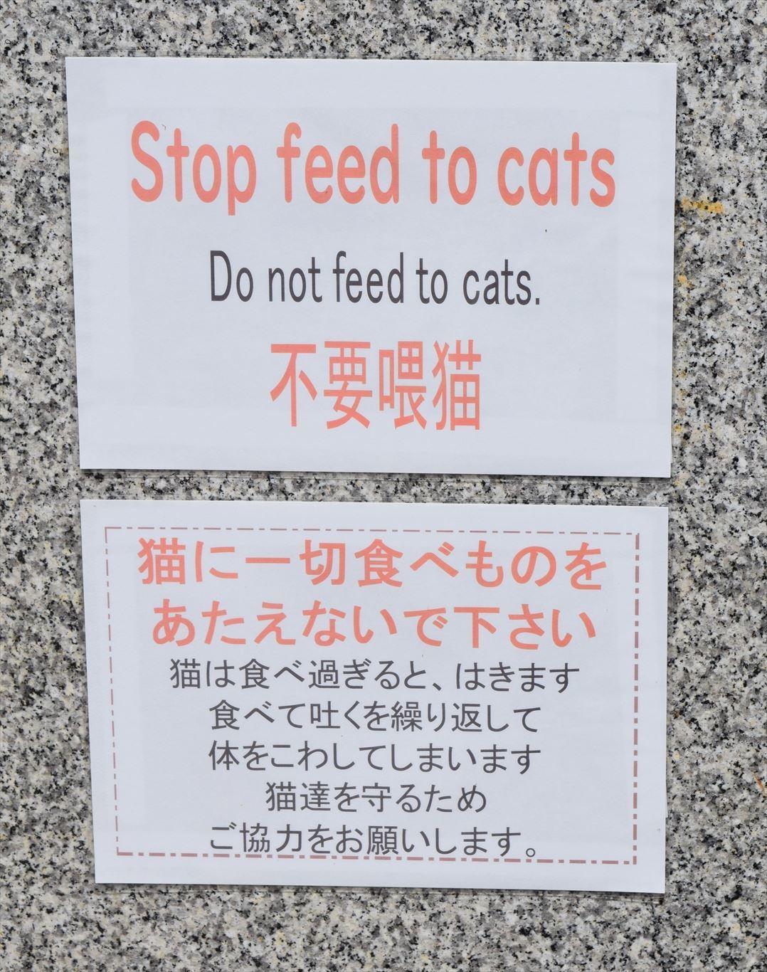 猫の島田代島_エサやり禁止掲示