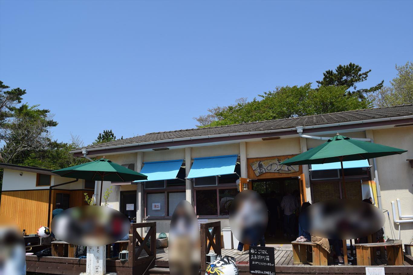 猫の島田代島_にゃんこ共和国建物